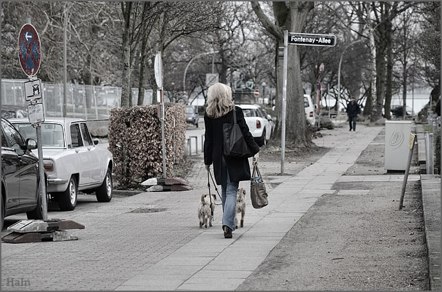 fontenay_einkauf