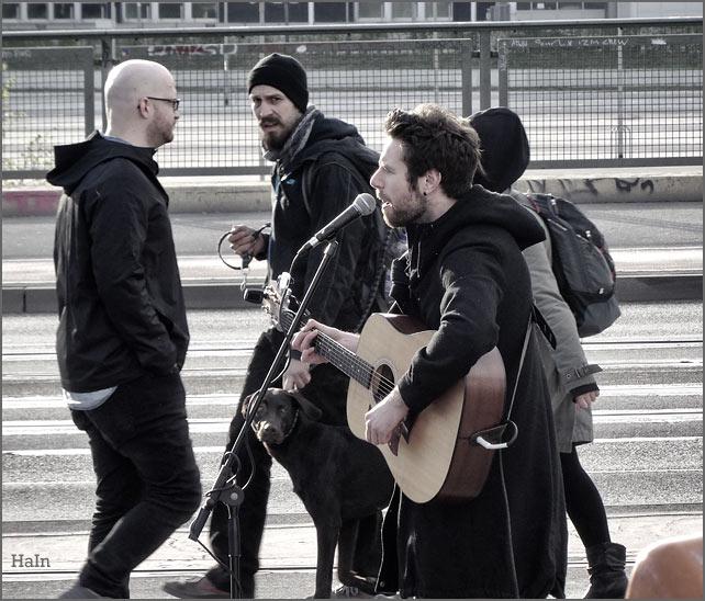 hundeblick_musik