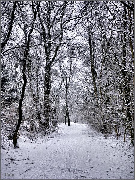 schneefall_hh_1a