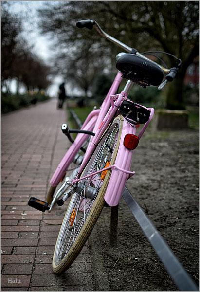 rosa_fahrrad