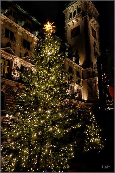 weihnachtsbaum_rathaus