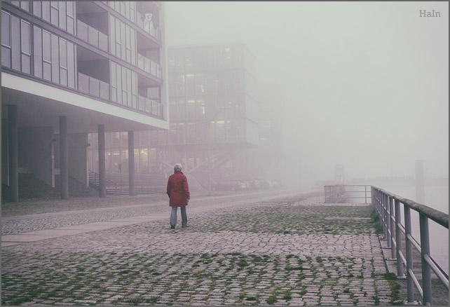 nebel_spaziergang
